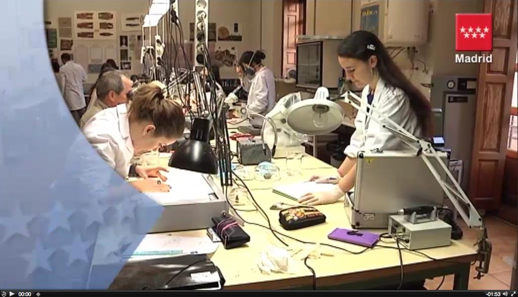 www.escrbc.com videos 120308 Escuela Restauracion